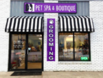 Cavalier Studio Pet Spa & Boutique