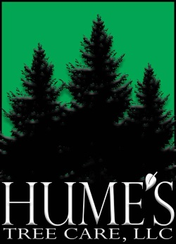 Hume's Tree Care Northern Lights Parade Platinum Sponsor 2017